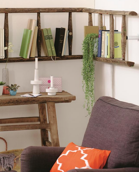 Ladder Storage from DIY-Enthusiasts